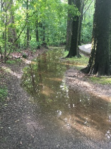 Lago di Teddy