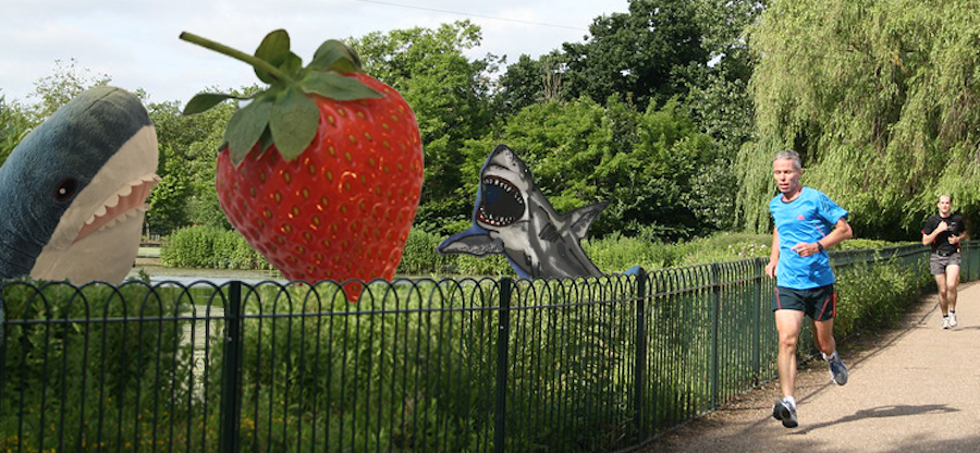 sharkstrawberryfpcc