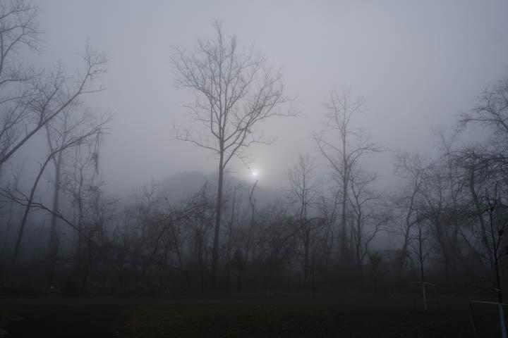 fog-web