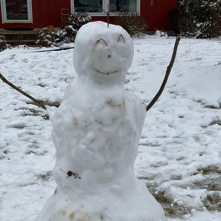 adrien-harrison-snowman-web