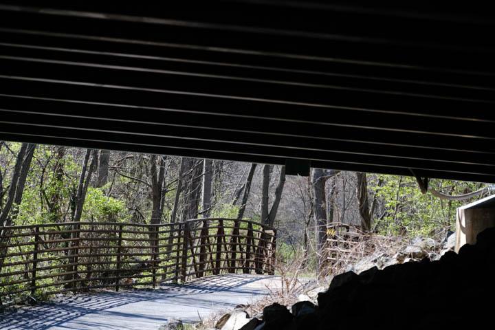 193-bridge-web