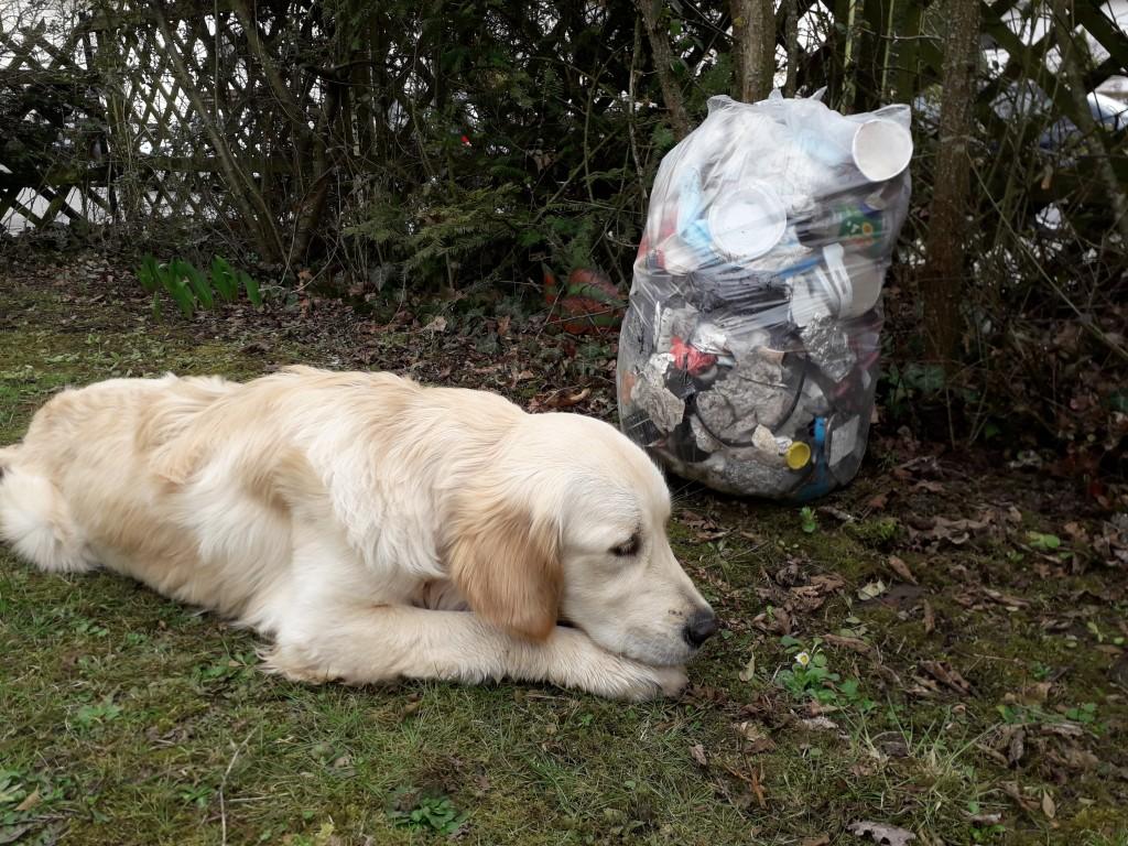 Luxi und der Müll