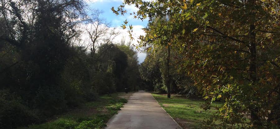 Parc Bouillides