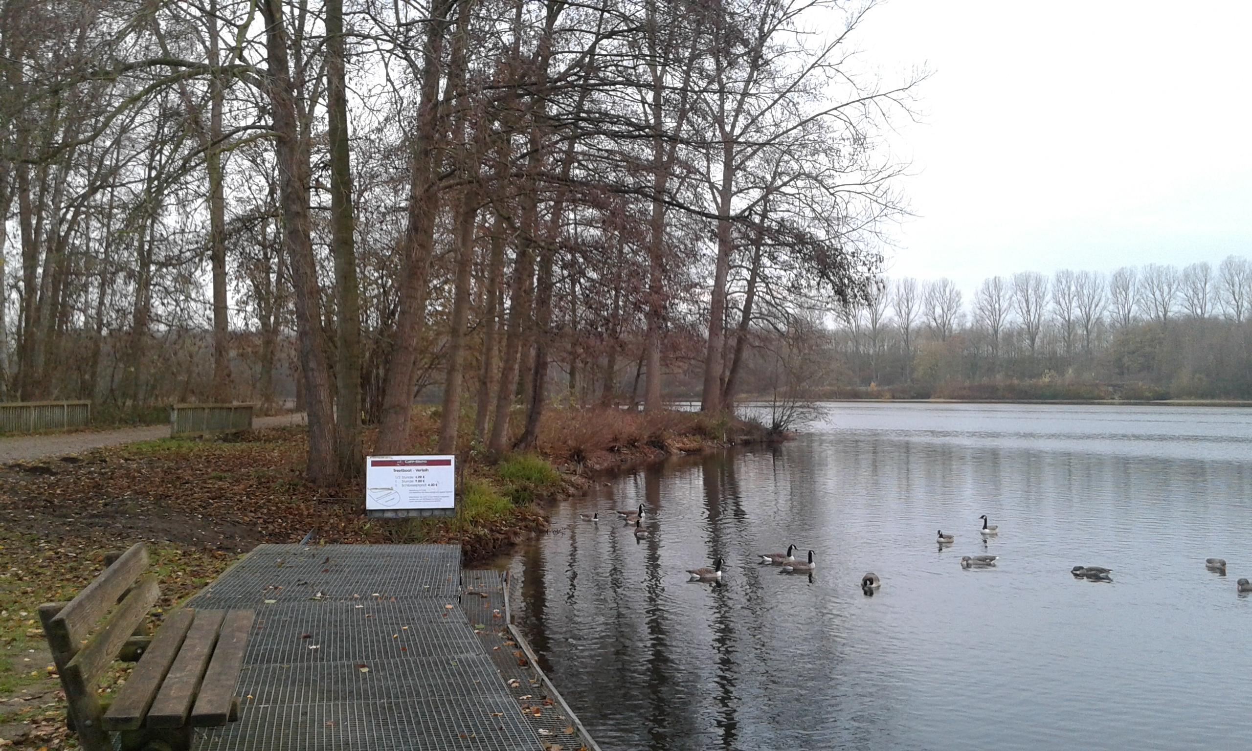 Jezioro (5)