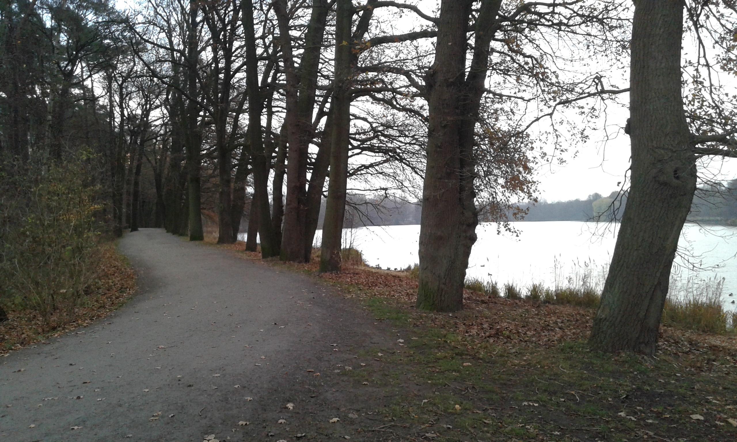 Jezioro (6)