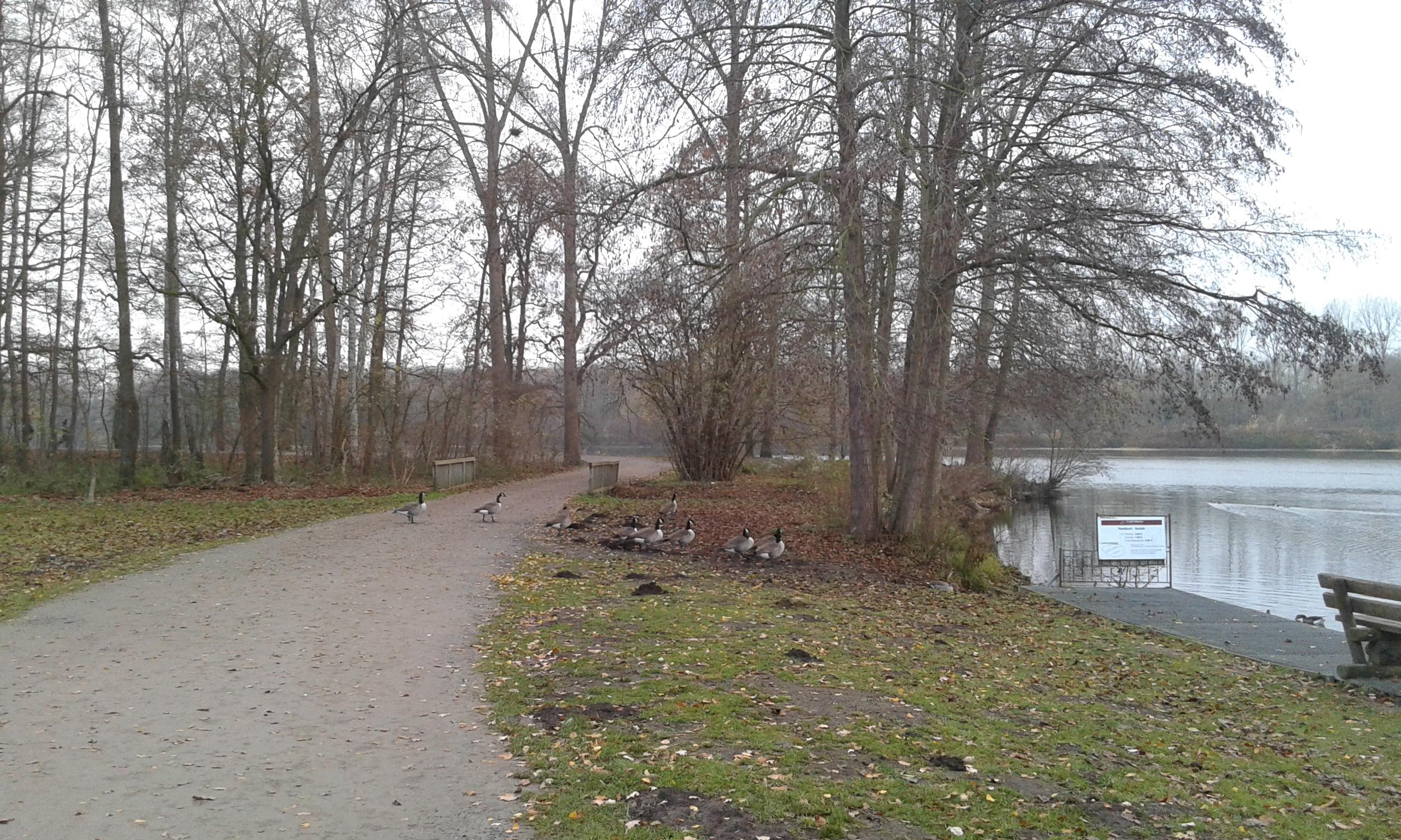 Jezioro (7)