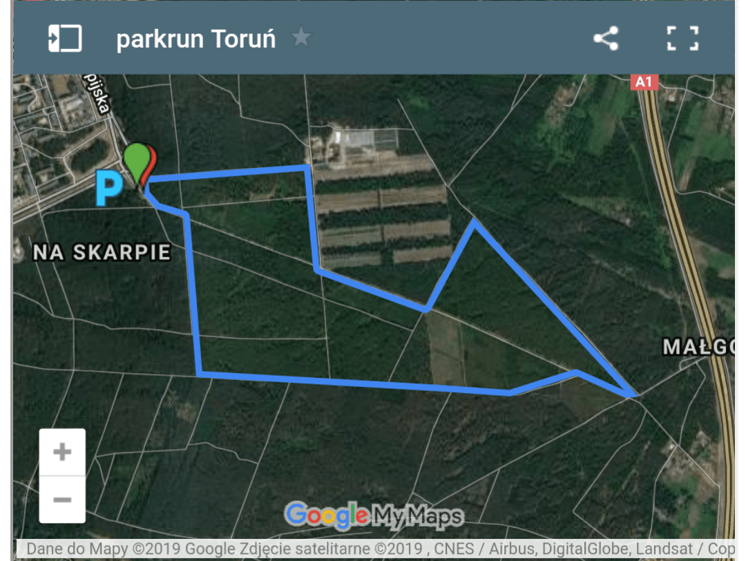 Toruń 3