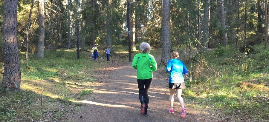 Huddinge parkrun image for newsletter