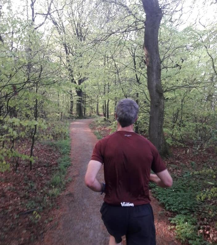 Vejen forest section