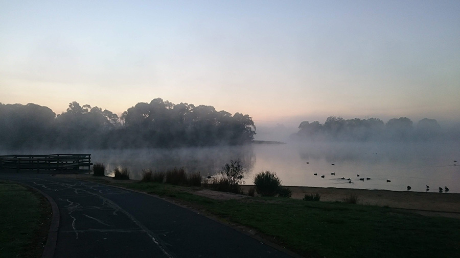 Jells_fog