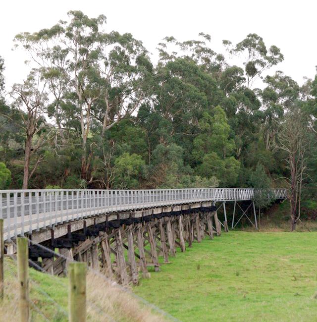 Koony-parkrun_Trestle-Bridge