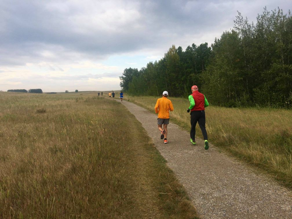 Nose Hill Runners