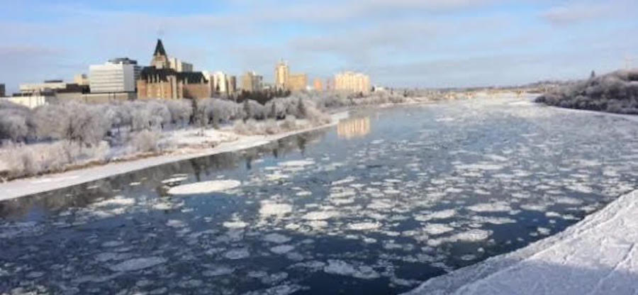 mendel-ice