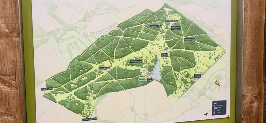 Hatfield Forest parkrun