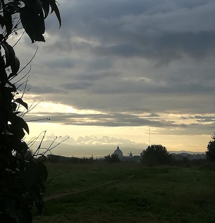 Roma Pineto alba