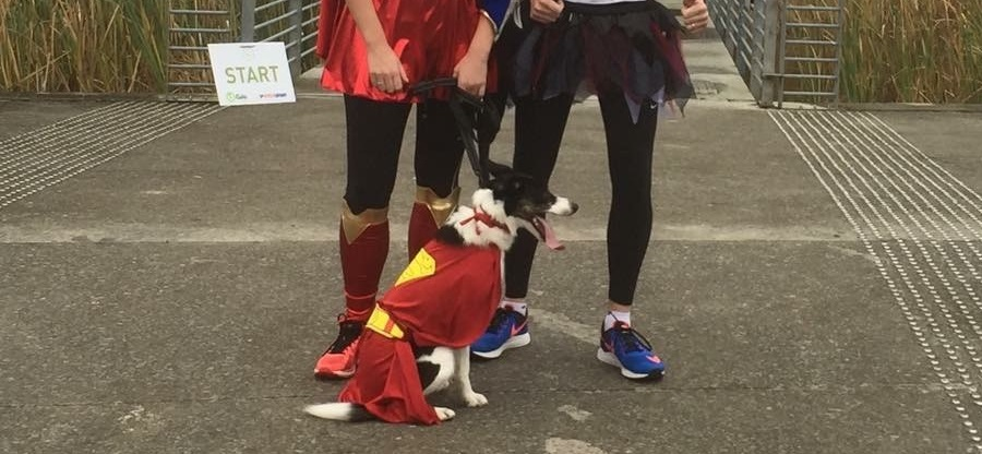 dogs of parkrun 2