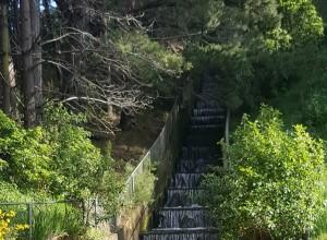 porirua waterfall