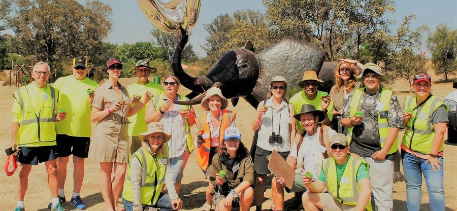 Volunteer Safari