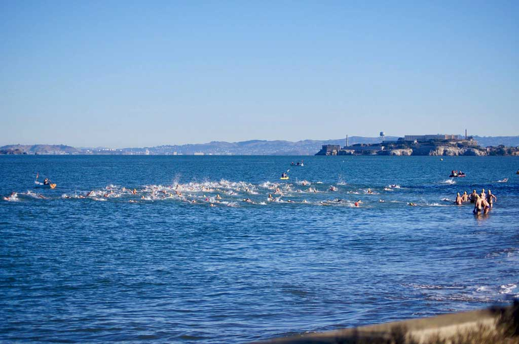 crissyfield_20171118_swimmers_sm