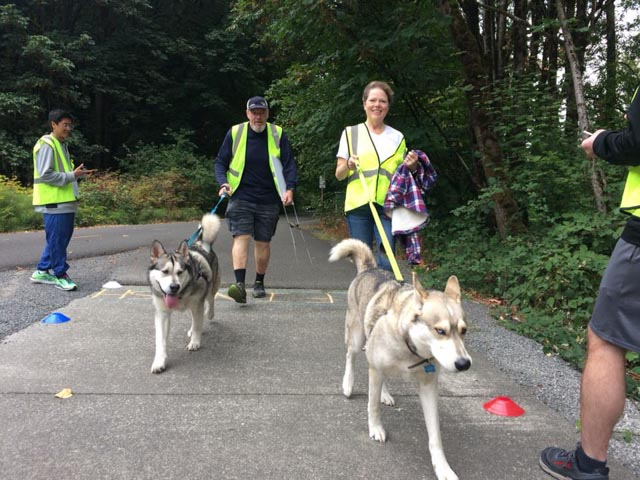 renton_20180901_kennedydogs_web