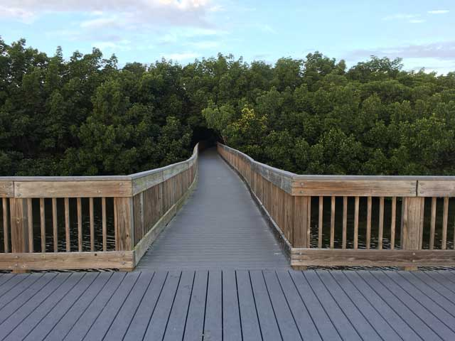 20190426_weedonislandpreserve_boardwalk_web