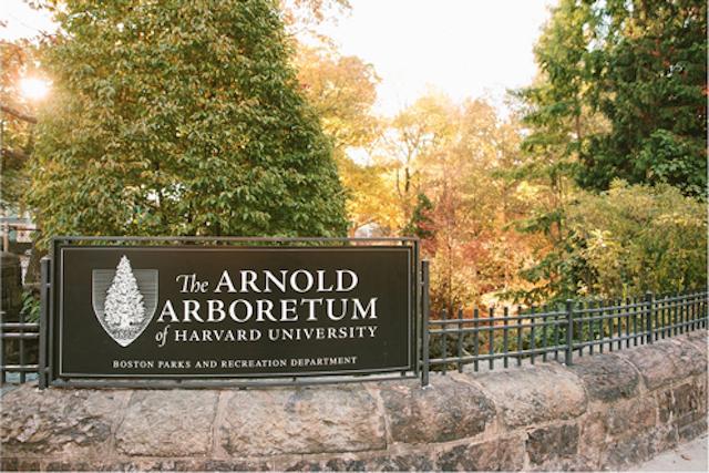 Arboretum sign 640inc