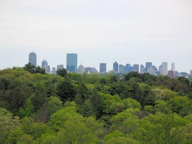 Arboretum skyline 640inc
