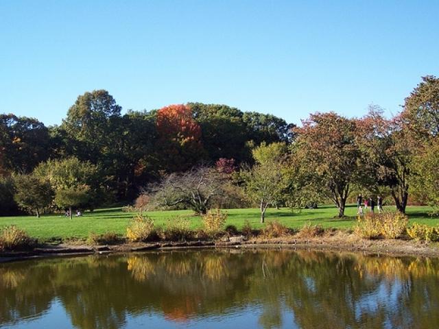 Arboretum water-1