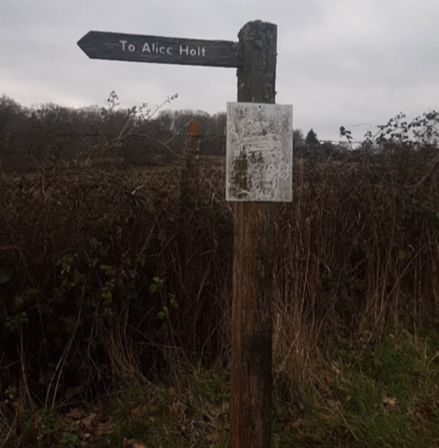 Alice Holt signpost