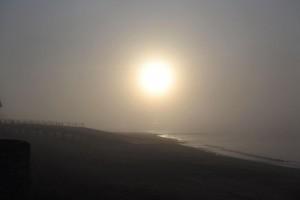sea-mist 1