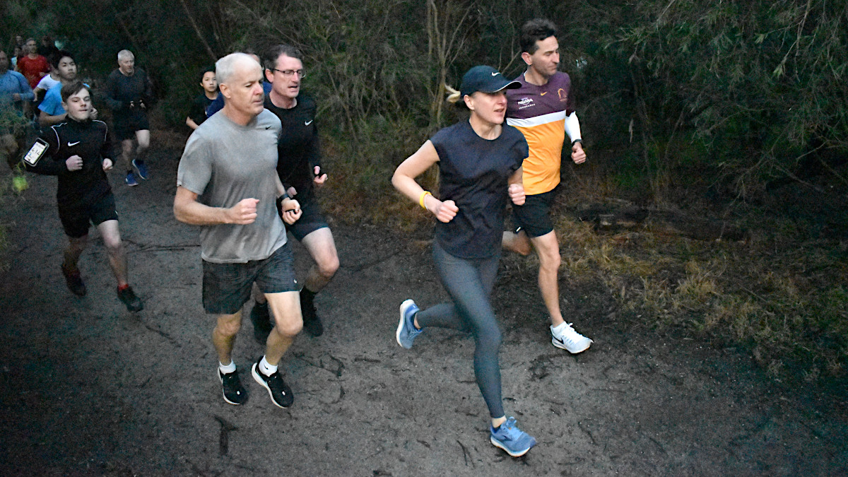 A group of runners on a bushy gravel track.