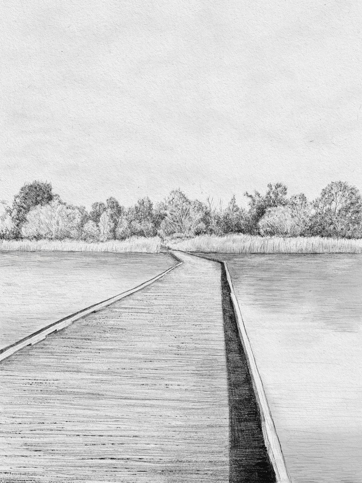 turtle-rock-pond-bridge-drawing