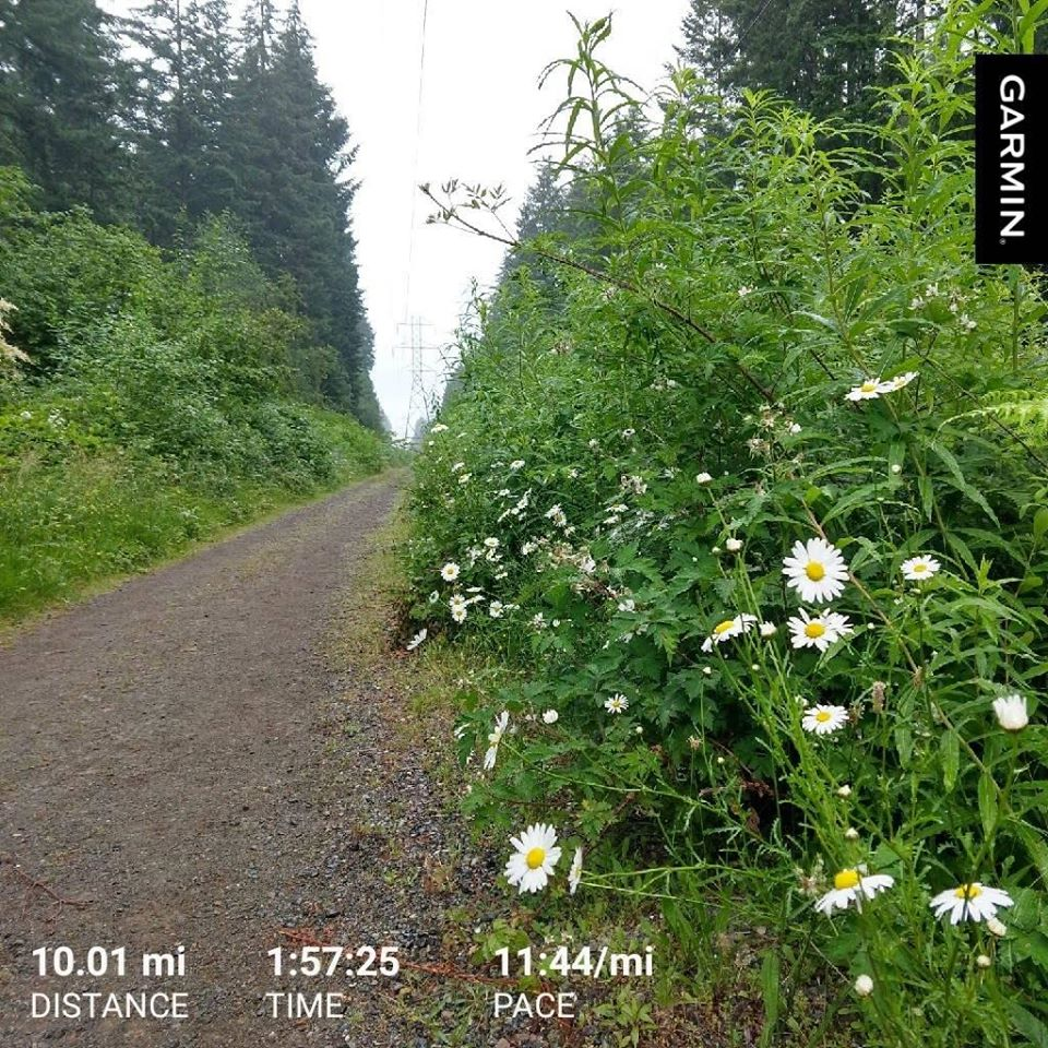 Nina Bridle Trails