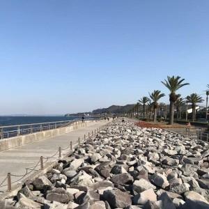 馬堀海岸遊歩道