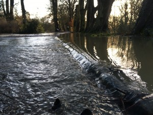 flood_lowdown