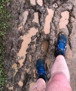 muddy pomphrey