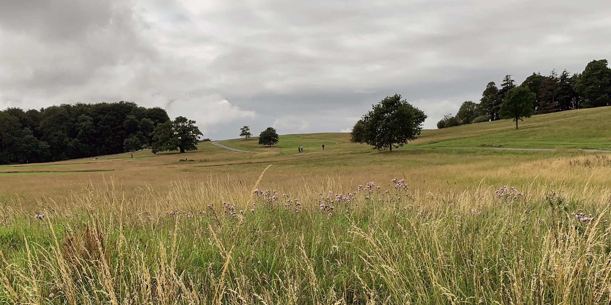 2020-07-09 gravel hill