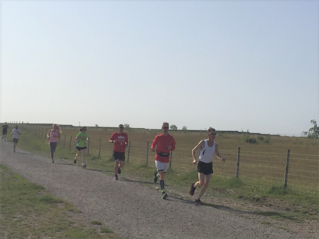 Runners braving the heat, the hills and the dust.