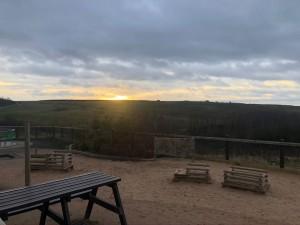 Report sunrise