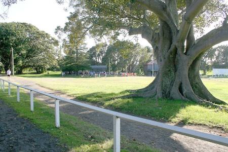 Centennial parkrun