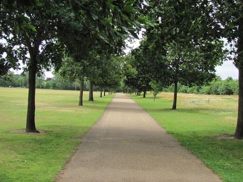 Norwich parkrun