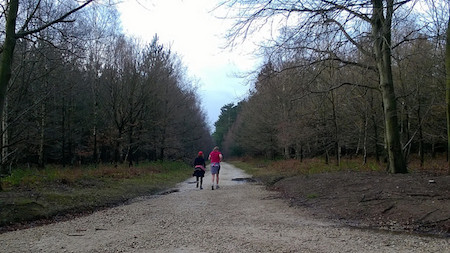Sherwood Pines parkrun